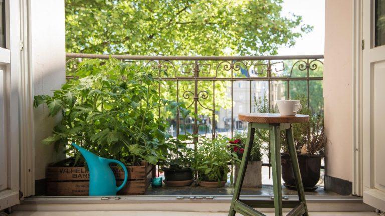 Se buscan en Santa Coloma pisos con balcones, terrazas, patios y jardines
